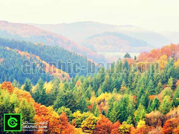 تصویر کوهای جنگلی